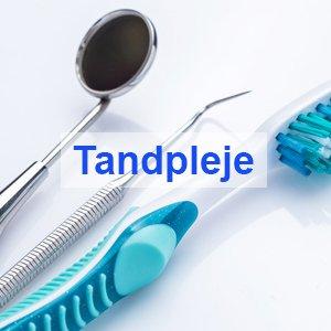 Tandplejer